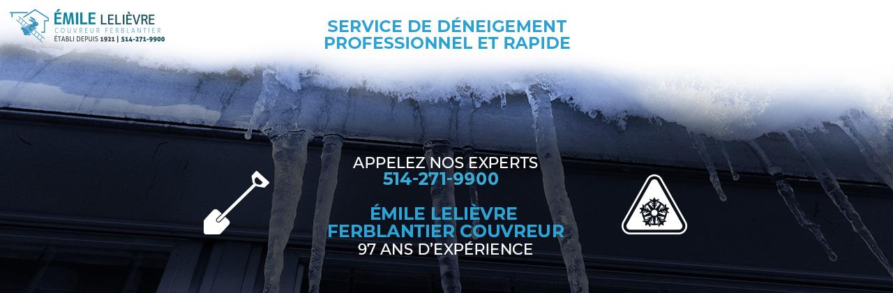service-deneigement-professionnel